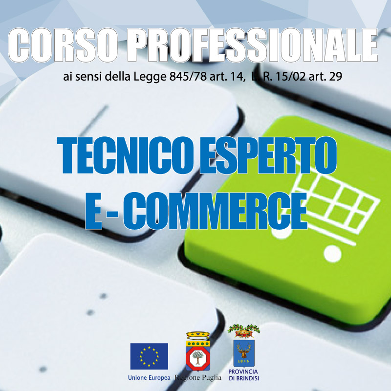 tecnico e-commerce